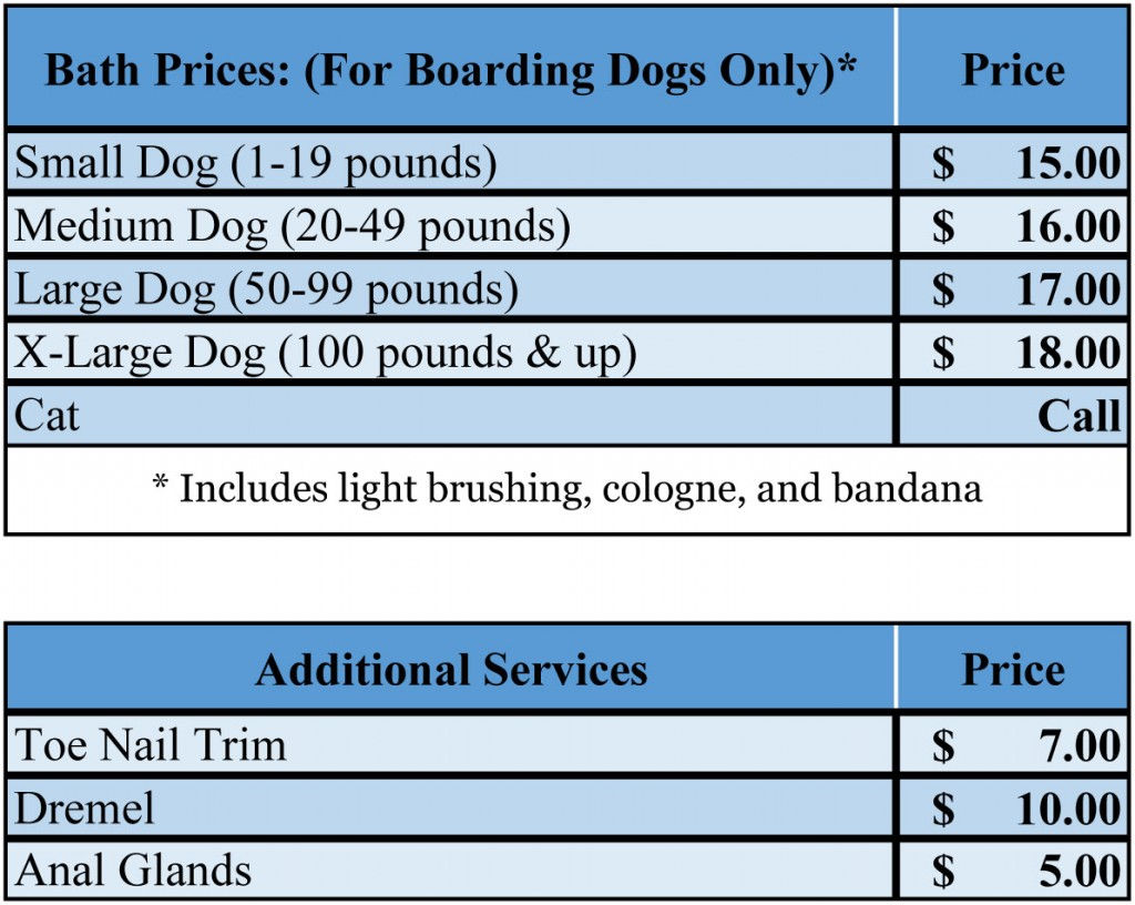 BathPrices 1024x816 Dog and Cat Grooming